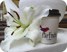 Кофейная лаборатория Fair Finch